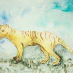 タスマニアタイガー(フクロオオカミ)まとめ!絶滅原因から目撃情報